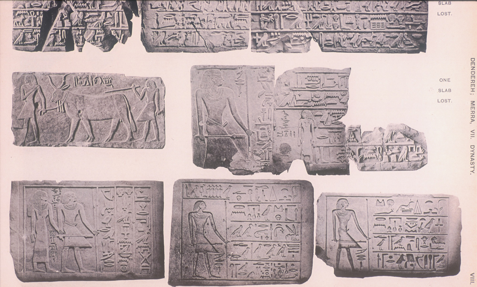 Reliefs from tomb of Mereri.