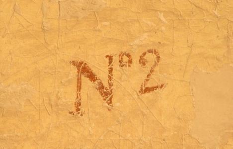 Wilkinson's tomb number painted over incised graffiti.