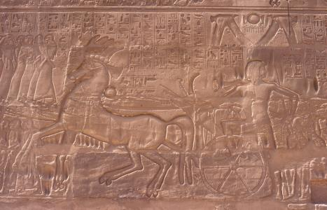 Sety I mounting chariot and leading captives on exterior wall of great hypostyle hall.
